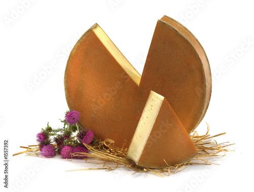 meule de fromage de montagne - 1557392