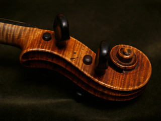 violin scroll, neck, and pegs on green velvet