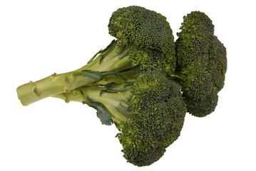 broccolli on white