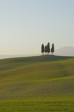 tuscan lanscape poster