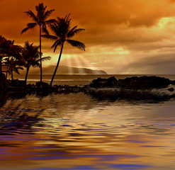 my sunset coast