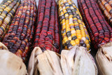 indian corn with husks poster