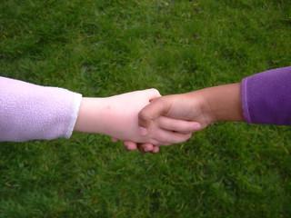 diversity shake hand