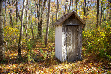 outhouse in the autumn