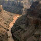colorado river in the grand canyon, arizona poster