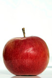 perfect isolated red apple on white poster