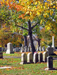 cemetery in autumn 8