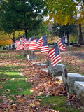 headstones and flags poster