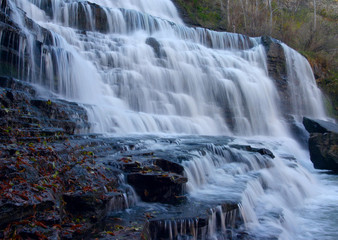 cascades and leaves