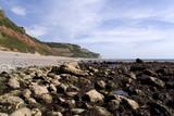 england devon jurassic coast branscombe mouth beac poster