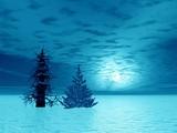 two fir in moonlight poster