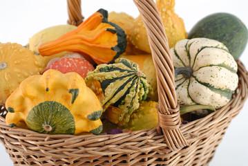 colour pumpkin in basketfull