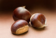 chestnut trio on brown tone background