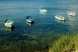 fishing boats at the shore poster