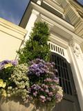 floral pot at door entry poster