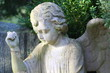 engel 1