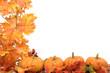 Leinwandbild Motiv pumpkins with fall leaves