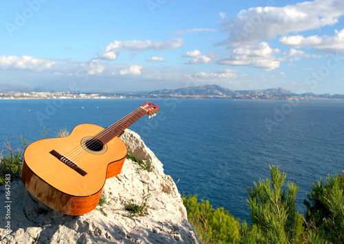 guitare et nature