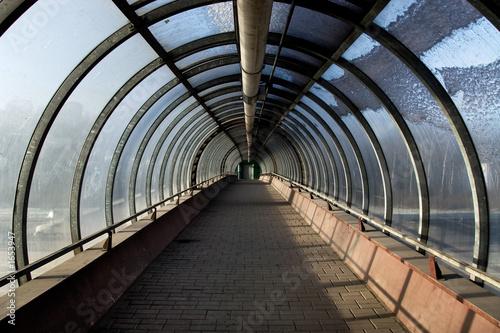 tunnel autumn - 1653947
