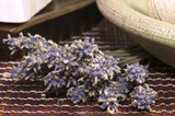 lavender bunch poster