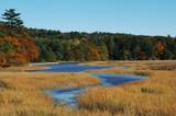 fall wetlands poster