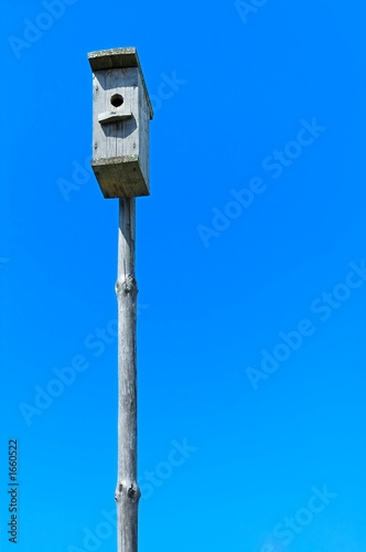 nestling box in the blue sky