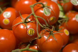 organic tomatoes with organic label in clear focus poster