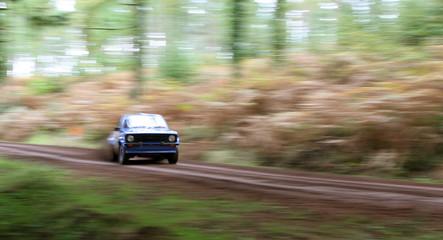 fast rallye car