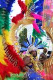 Fototapety danseuse carnaval