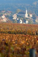 village vigneron