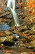 autumn waterfall ii