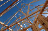 roof frame structure poster