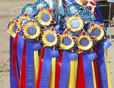 award ribbons2 poster
