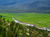 a scenery of countryside in southern china poster
