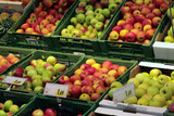 a variety of apples at a grocery store. poster