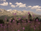 devoluy valley alps france mountains scenery lands poster