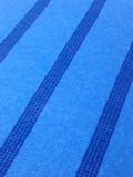 swimming pool lanes poster