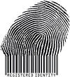 fingerprint17orig333(fp17codebar1)