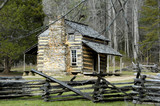 cades cove - john olivers cabin poster