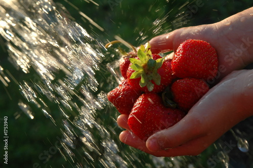strawberry under a jet of water.