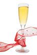 champan y serpentina