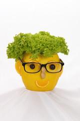 mr. salad