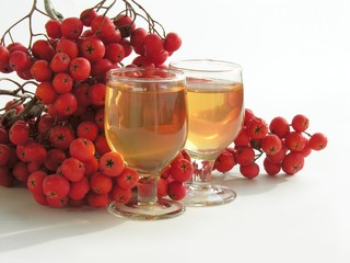 rowan-vodka and rowan-berries