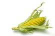 corn cob i