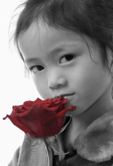 girl with a rose 2