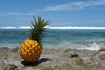 ananas tropical