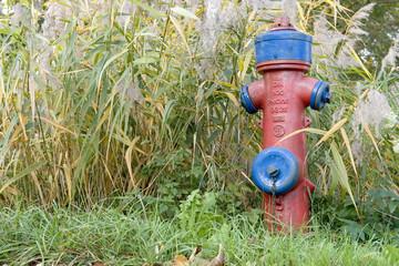 hydrant imschilf