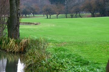 golf #6