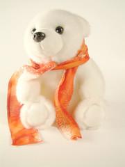 polar with scarf