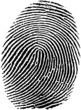 fingerprint17